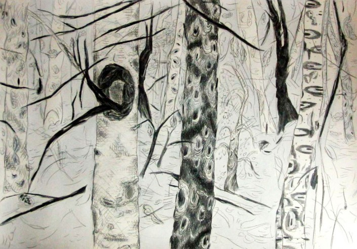 "Anja Fell, ""Forest"", 2013, pencil and watercolours on cardboard, 70 x 100 cm"