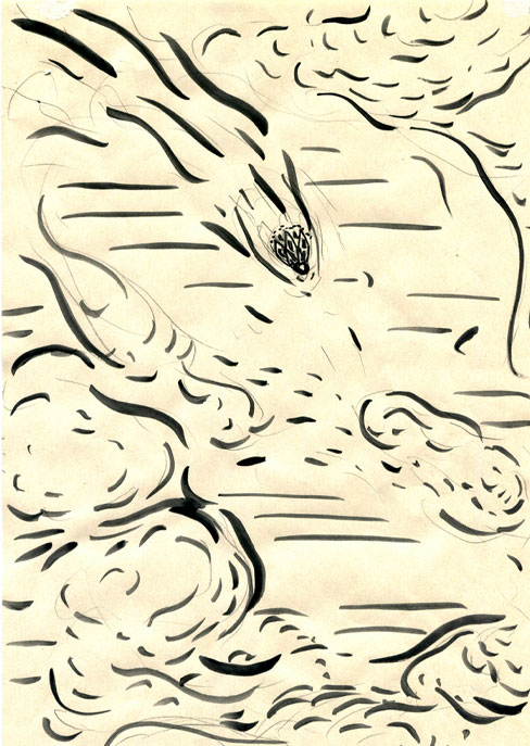 "Anja Fell, ""Shutetlcock"", 2006, ink on paper, 29 x 21 cm"