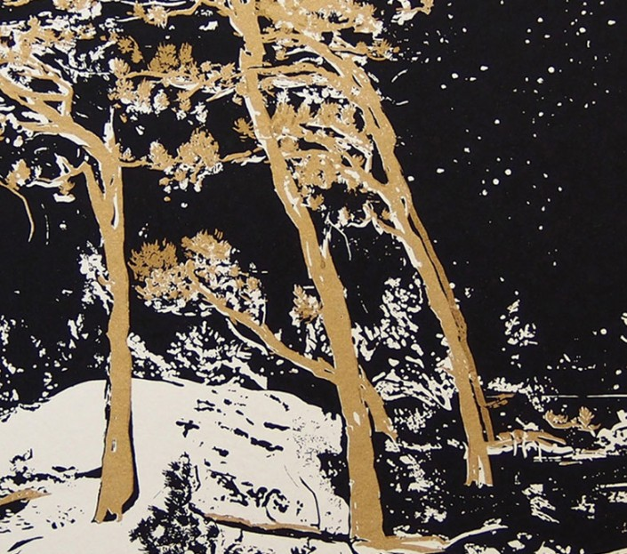 "Anja Fell, ""Weststrand"", 2014, screenprint on paper, image detail"